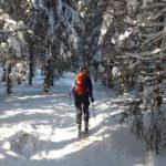 Ergometr, czyli sprzęt idealny do przygotowania na narty?